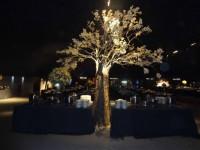 Serviços - árvore francesa para festas casamentos em Piracicaba e região - árvore francesa para festas casamentos em Piracicaba e região