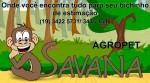 Agro Pet Savana Banho e Tosa