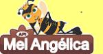 Mel Angélica Produtos Naturais Piracicaba