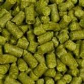 Para sua casa - LUPULO Brewers Gold em Pelet Amargor/Aroma - Origem: Reino Unido e EUA - 10g - LUPULO Brewers Gold em Pelet Amargor/Aroma - Origem: Reino Unido e EUA - 10g