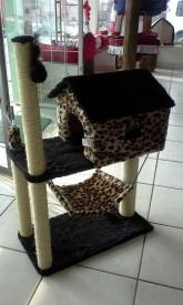 Animais - arranhador e gato  - arranhador e gato