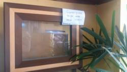 Para sua casa - Aquário Quadro para Parede Vivo Decoração de Parede - Aquário Quadro para Parede Vivo Decoração de Parede