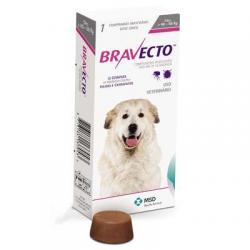 Animais - Bravecto contra pulgas e carrapatos - Bravecto contra pulgas e carrapatos