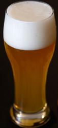 CERVEJA WITBIER - receita tradicional Belga para fazer 20 litros