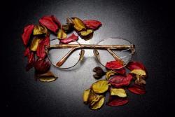 Saúde e beleza - Armação de Óculos de Grau direto da Fábrica à partir de $ 49,90 - Armação de Óculos de Grau direto da Fábrica à partir de $ 49,90