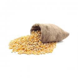 Saco de Milho Selecionado 25 kg